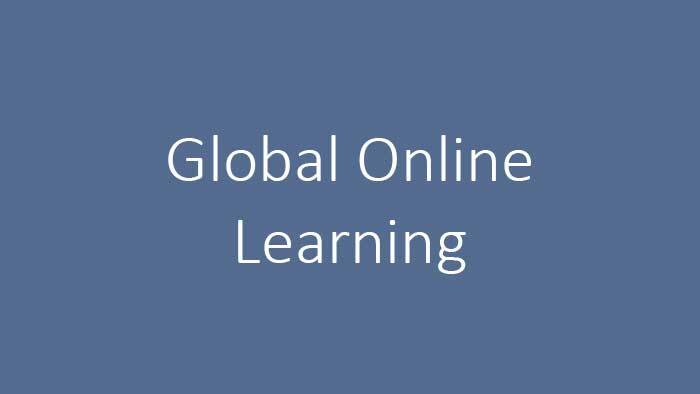 Global Online Learning Program
